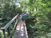 43-bruce-trail-bridge-jpg