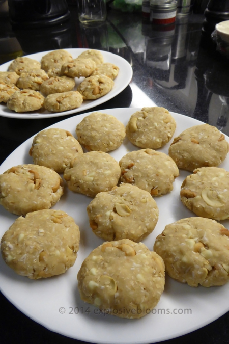 2014-coconut-cashew-choco-chip-cookie