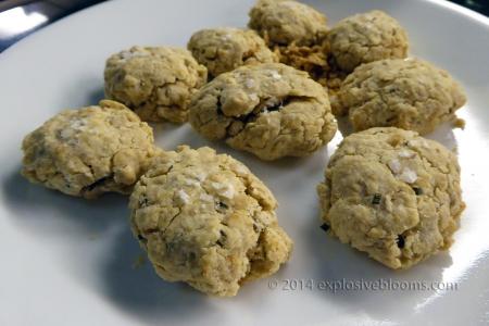 2014-savoury-cookie