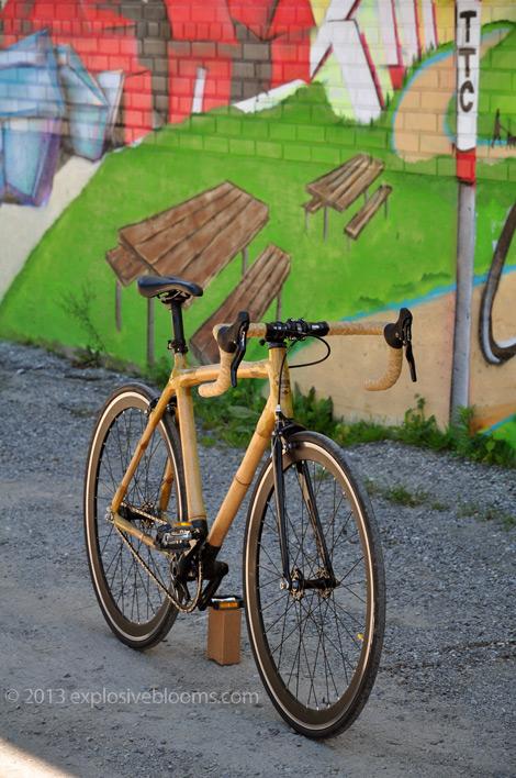bamboo-bike-front