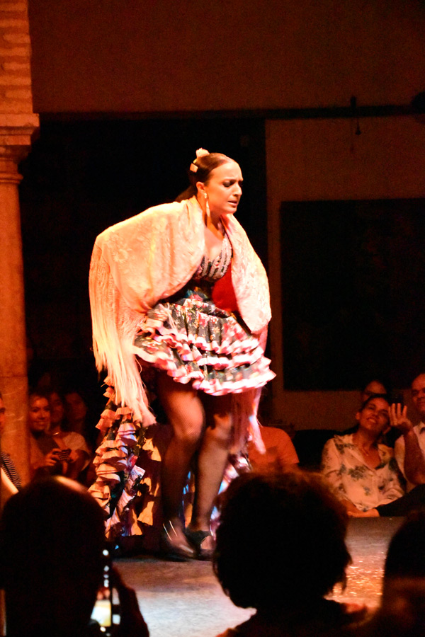 flamenco-2