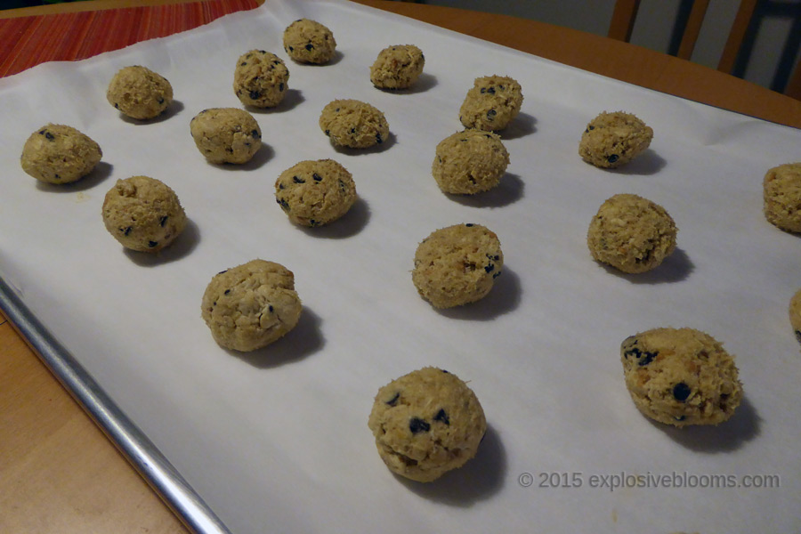 01-chocolate-chip-balls