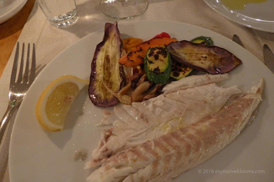 D4-fish