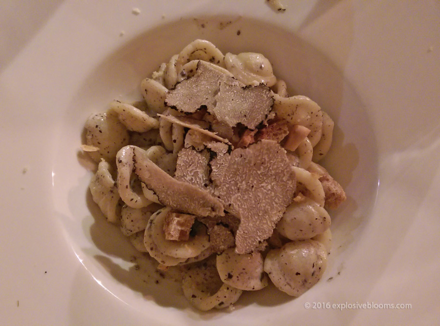 night-1-orrechiette