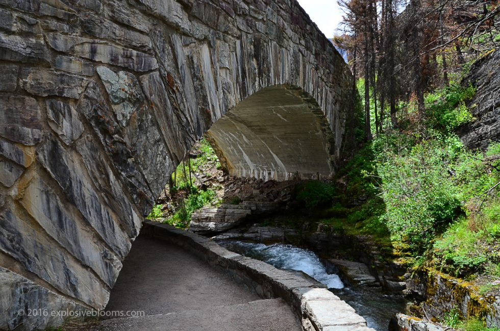 GNP-bridge