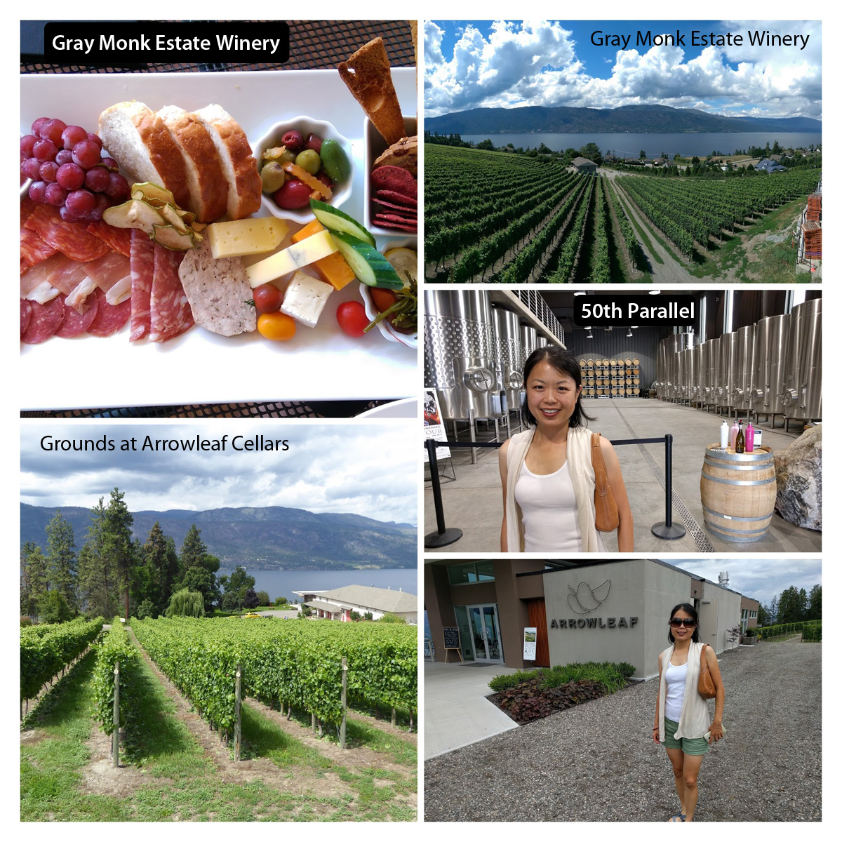 BC Lake District wineries