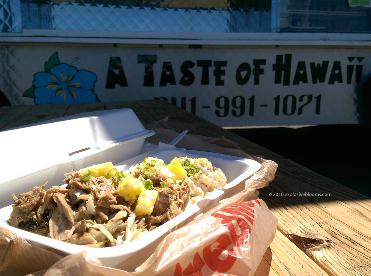 Hawaiian food truck