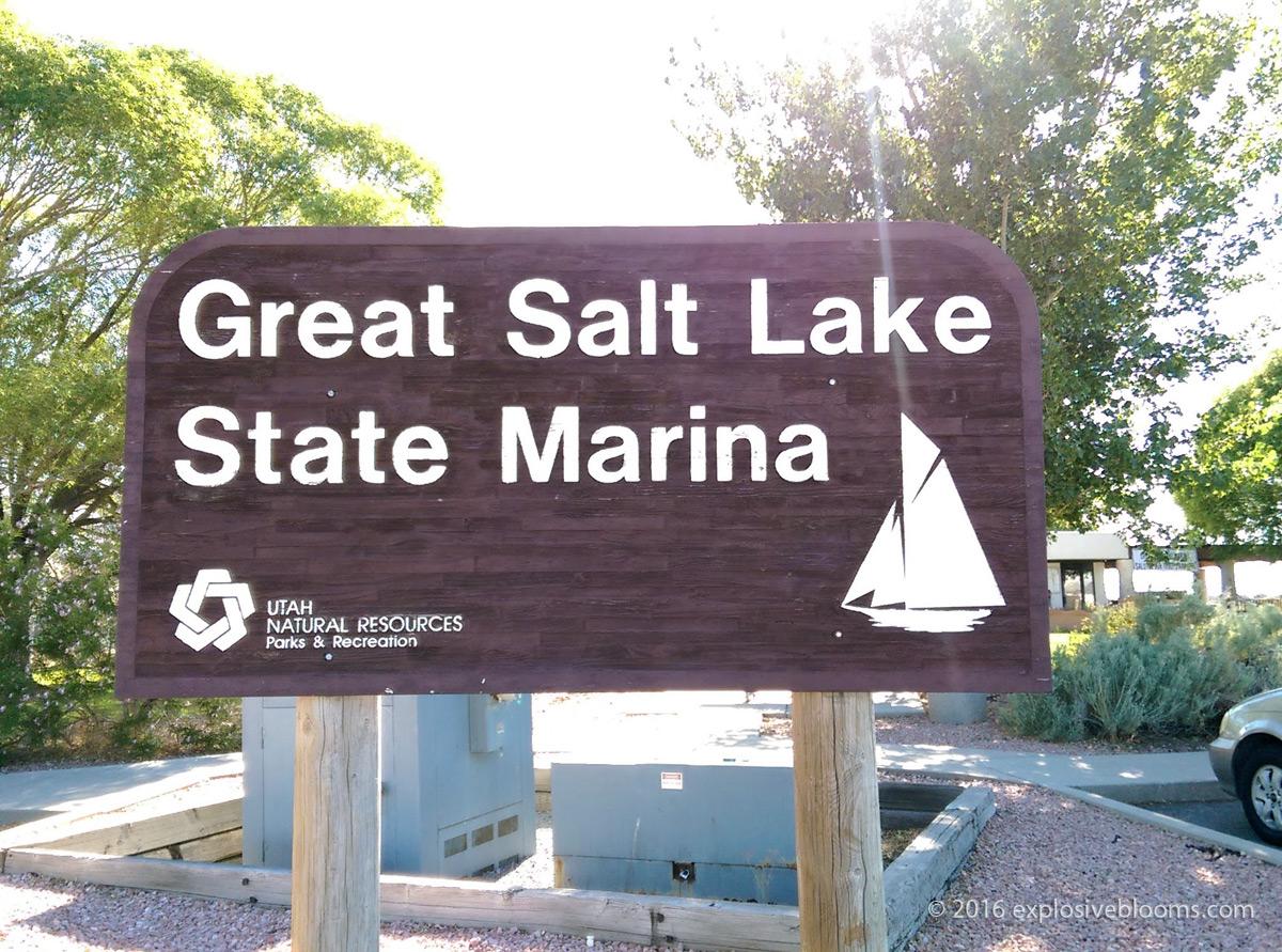 Great Salt Lake 1