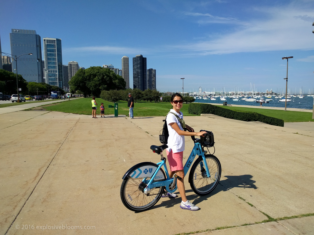 Chicago by Divvy