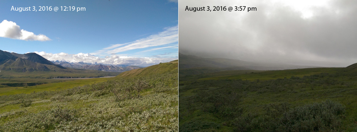 weather-change-denali