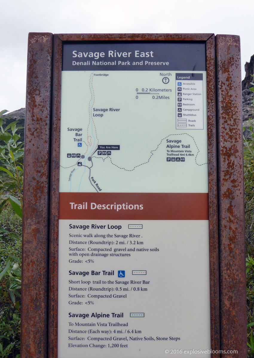 Savage Alpine Trailhead
