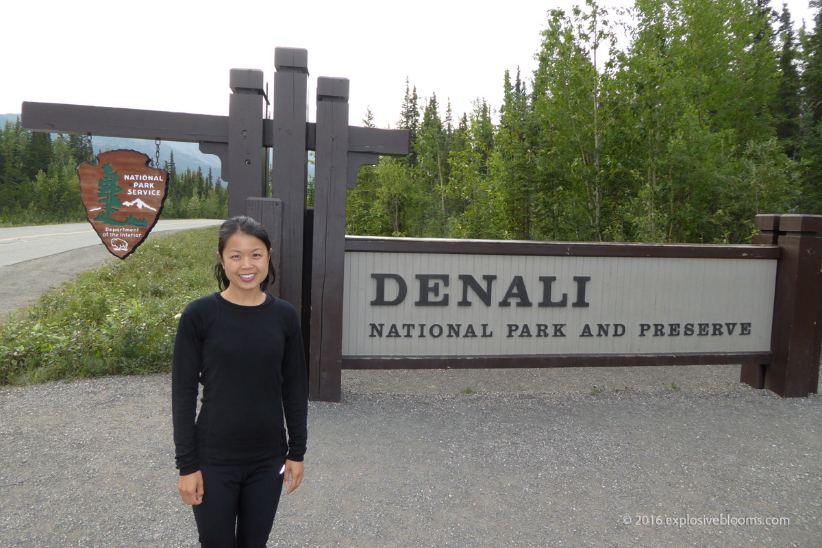 Entrance Denali National Park